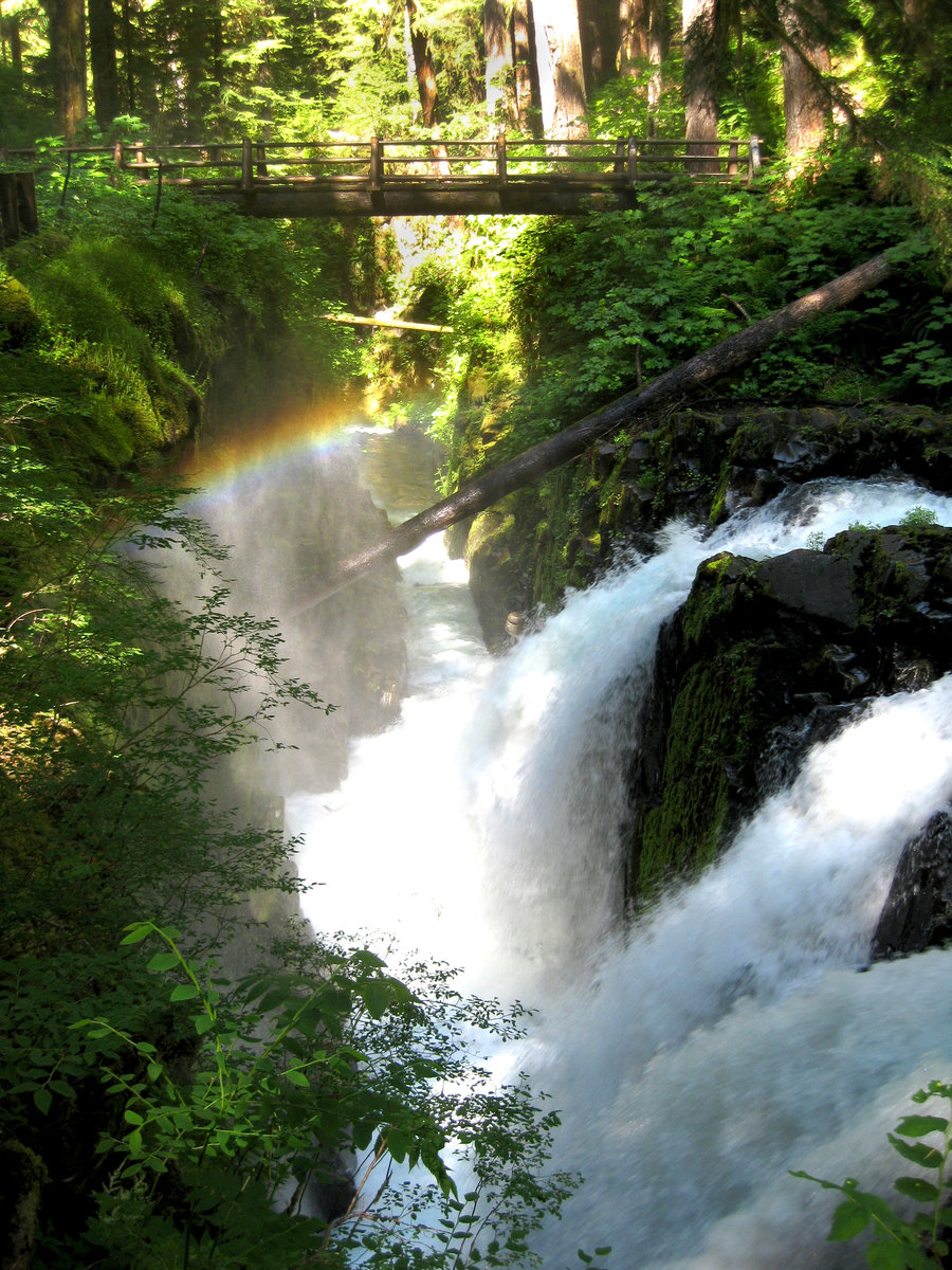 Washington Waterfall Hikes You Have To Try!